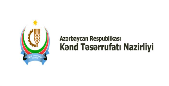 Nazirlik 2018-ci il üçün planlarını açıqladı