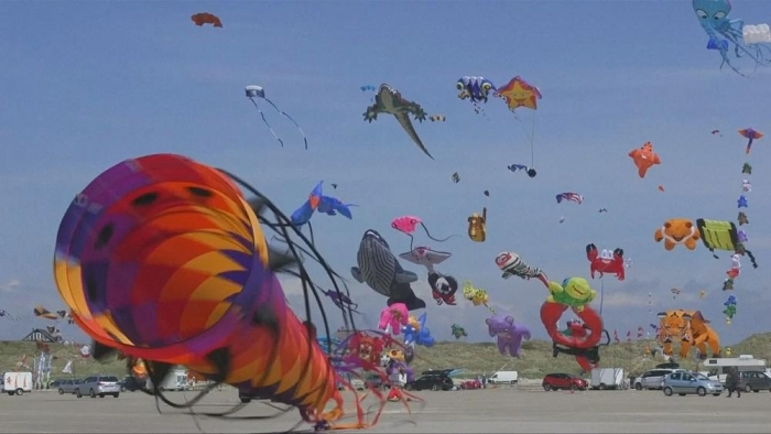 Thousands of kites fill the sky for annual festival - NO COMMENT