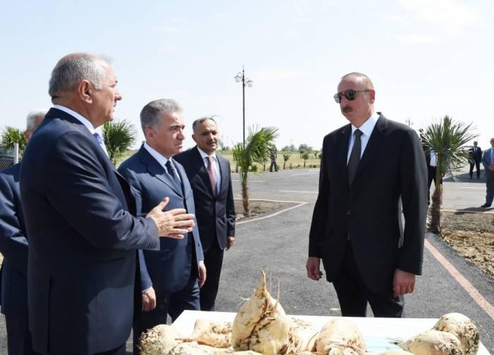"""Jalilabad: Staatspräsident Ilham Aliyev inspiziert im Agropark """"Günaschli-Agro"""" geschaffene Bedingungen"""
