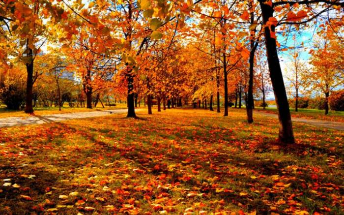Erster Herbsttag