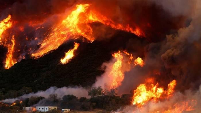 ABŞ-da meşə yanğınlarında 23 nəfər ölüb - Yenilənib