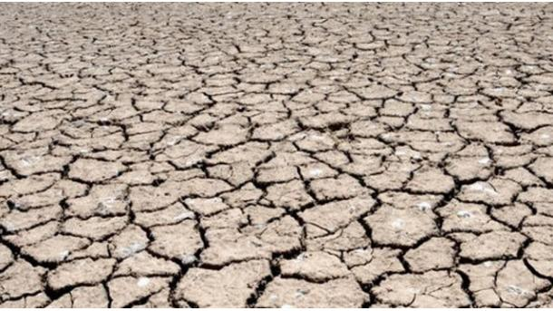 Los veranos más secos en tres siglos se han registrado en la última década