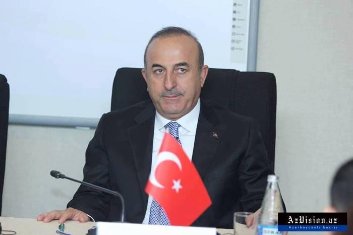 El ministro de Exteriores turco pospone sin fecha su visita a Washington
