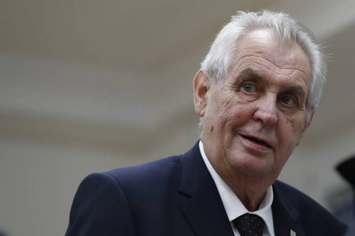 Czech president Zeman hospitalised after arm injury