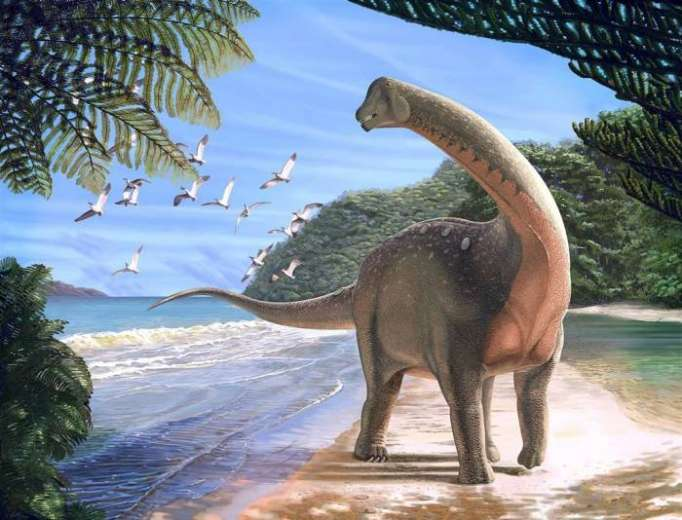 New bus-sized dinosaur species discovered in Egyptian desert