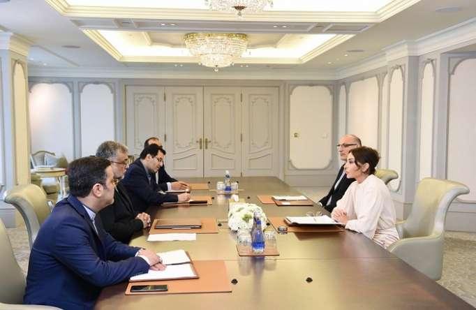 Mehriban Aliyeva traf sich mit dem iranischen Vorsitzenden der Organisation - FOTOS