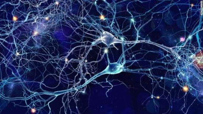 Psychiatric illnesses share similar gene activity, study suggests