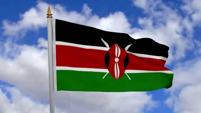 Court suspends TV shutdown in Kenya
