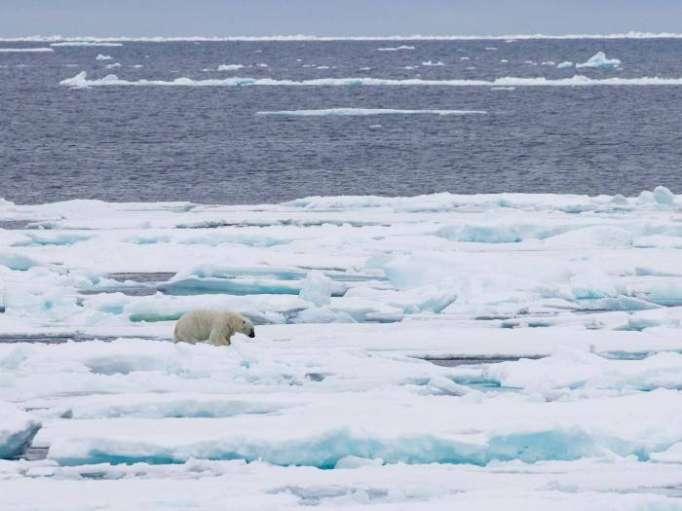 Global sea ice hits new low