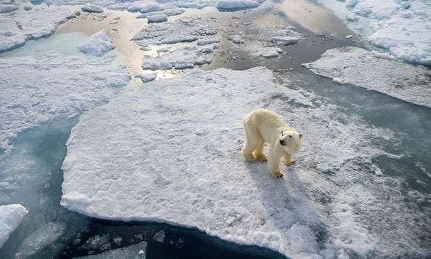 Melting ice sheets are hastening sea level rise, satellite data confirms