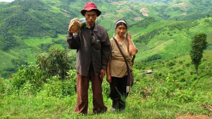 Cómo una pareja de Tailandia llegó a representar a toda la humanidad en Wikipedia