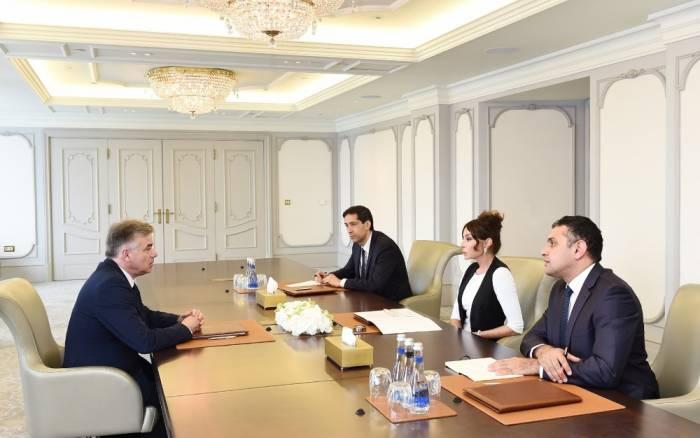 Mehriban Əliyeva fransalı senatorla görüşüb -
