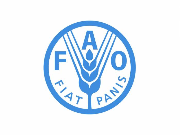 FAO to implement three more projects in Azerbaijan in 2018