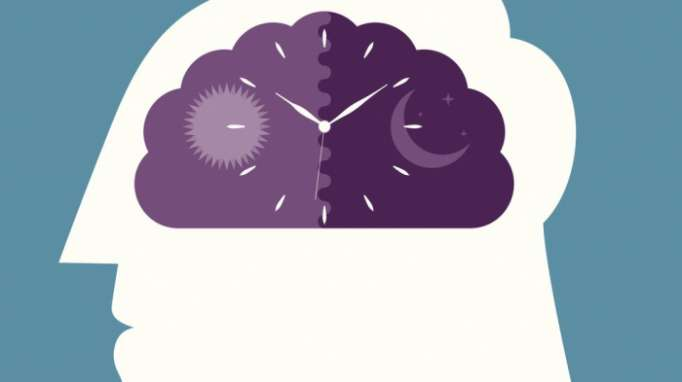 Body clock linked to mood disorders