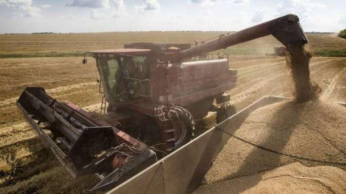 Russlands Getreideexporte nach China erreichen Rekordwert