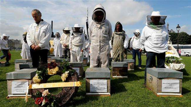Beekeepers stage funeral for France