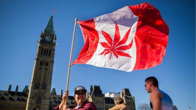 Canada legalises recreational cannabis use