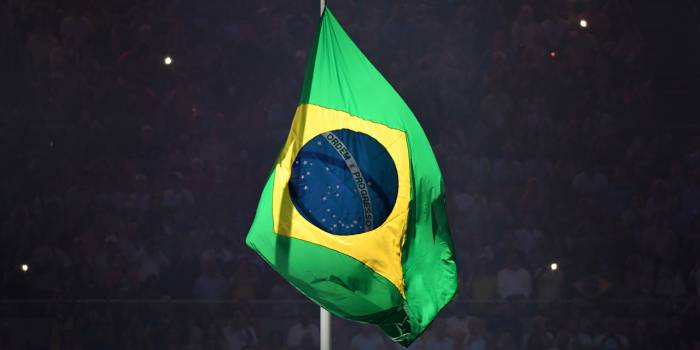 Un Brésilien obtient le droit de visite pour sa chienne