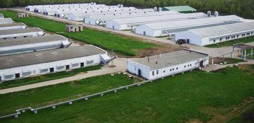 Azerbaijan's Agjabadi agricultural park may be commissioned in late 2018