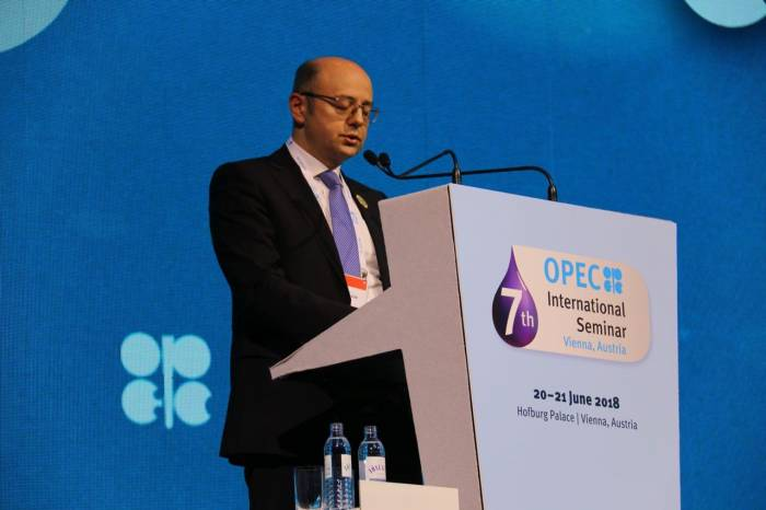 Difficulties in meeting global oil demand may arise in future - Azerbaijani minister