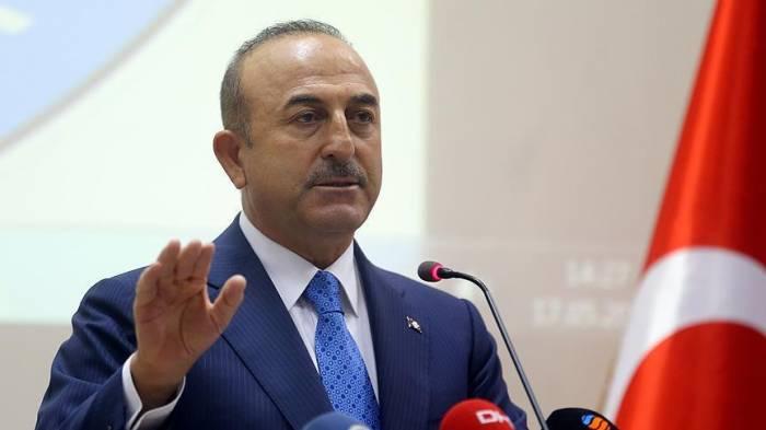 Çavuşoğlu Menbiç planının detallarını açıqladı