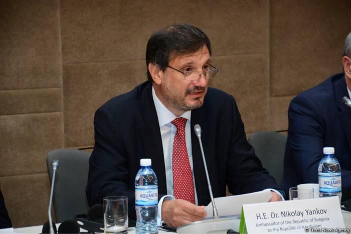 Azerbaijan - key partner in ensuring Europe's energy security, envoy says