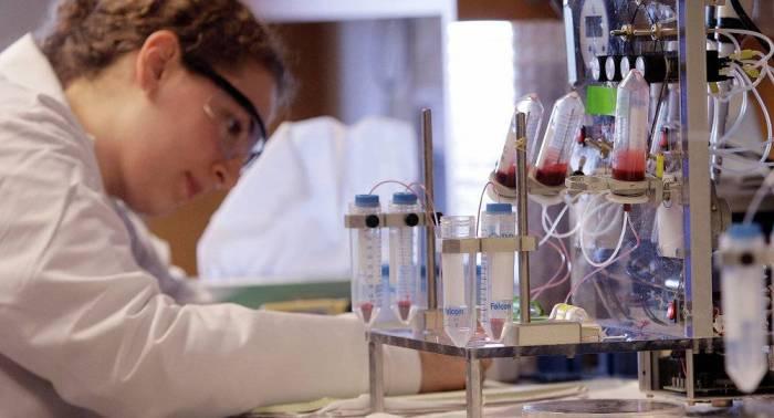 Deux nouvelles méthodes pour anéantir les tumeurs cancéreuses découvertes