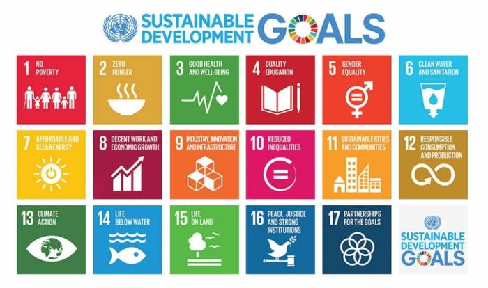 UN Azerbaijan calls on organizations to be involved in SDGs Implementation