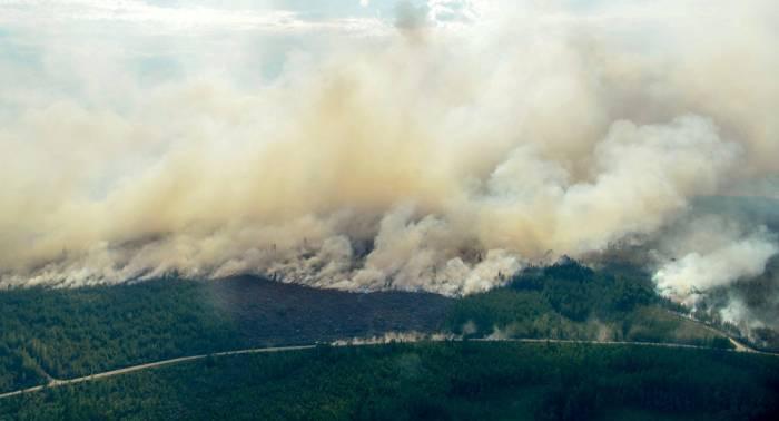 Suecia, afectada por los incendios forestales más graves de su historia