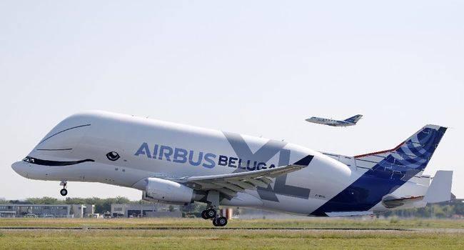 Le profil insolite de Beluga XL, le géant d