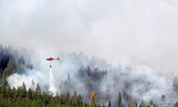 Sweden calls for help as Arctic Circle hit by wildfires