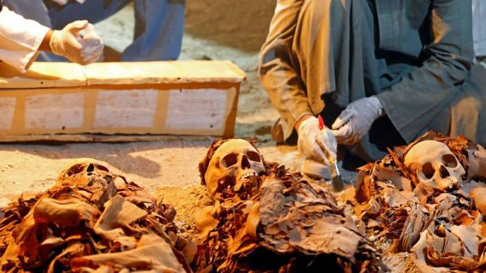 2-headed ancient Egyptian mummy shown to public for 1st time