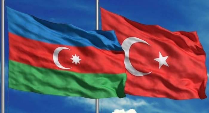 Azərbaycan və Türkiyə diasporu birgə işləyəcək