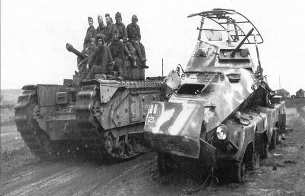 Siçanlar Hitlerə qarşı: Stalinqrad döyüşündə heyvanlardan necə istifadə olunmuşdu