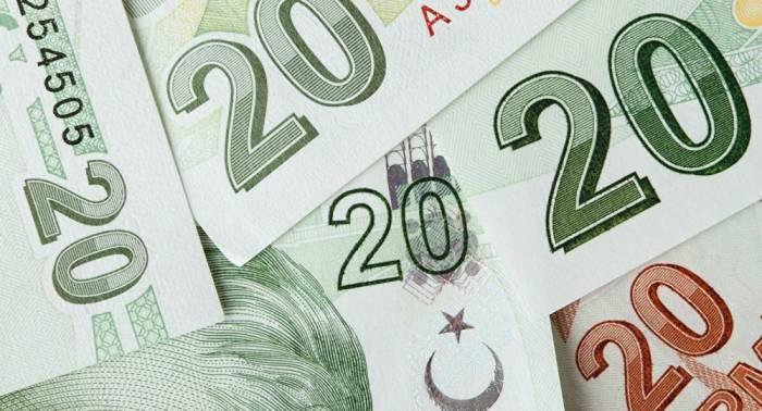 Empresas turcas no reembolsarán parte de la deuda generada por la caída de la lira