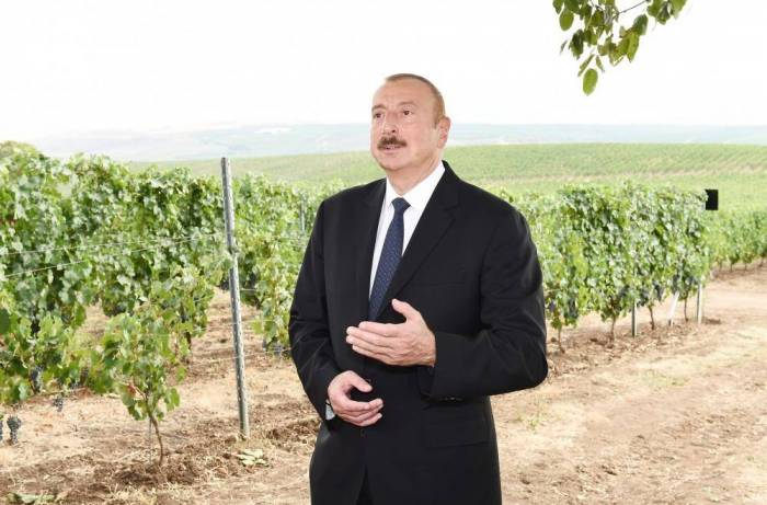 President Aliyev: Every newborn should have workplace in the future
