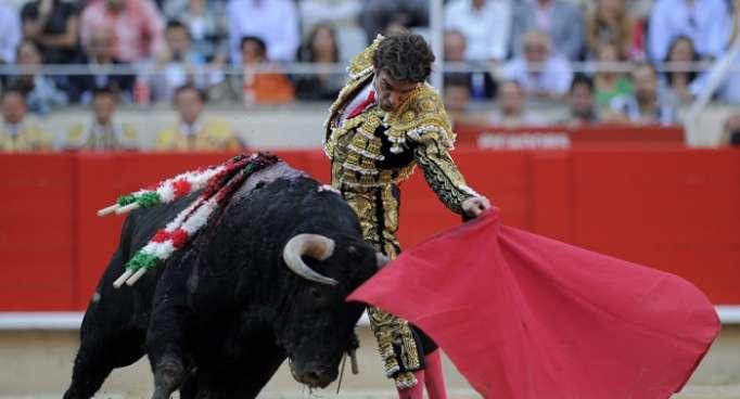Podemos propone un referéndum sobre el futuro de la tauromaquia en España