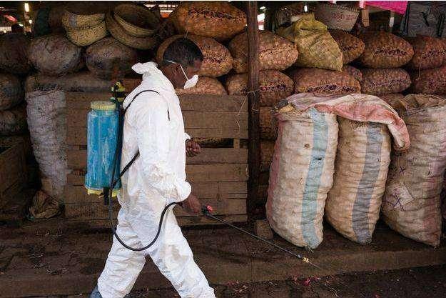 Madagascar: deux morts à cause de la peste