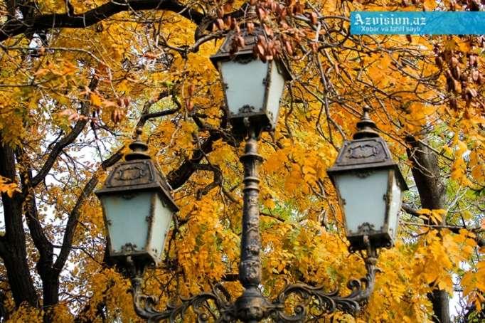 Payızın gəlişinə sayılı saatlar qaldı