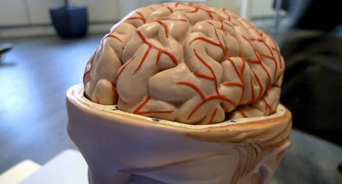 El descanso puede no ser bueno tras sufrir una lesión cerebral