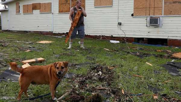 بعد إعصار فلوريدا.. الكلاب المدربة تشارك في البحث عن ناجين
