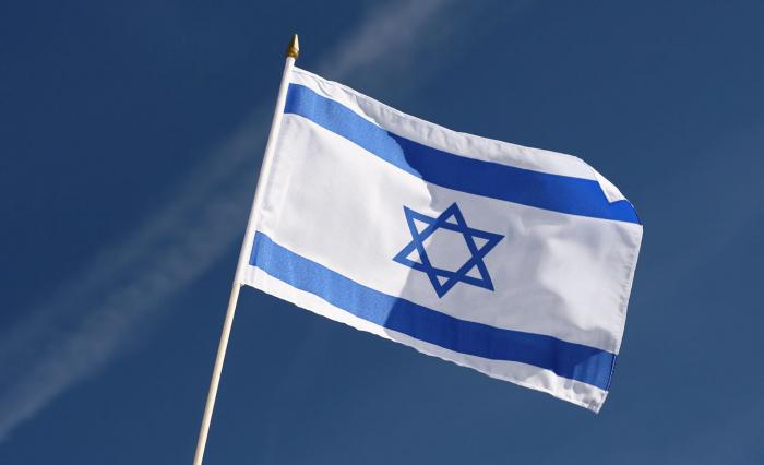 Une Américaine pro-palestinienne autorisée à entrer en Israël