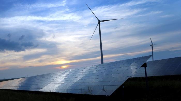 Erneuerbare Energien immer wichtiger beim weltweiten Verbrauch