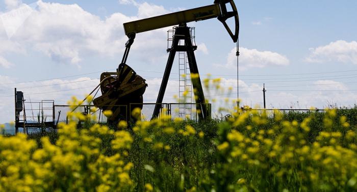 Russland: Trumps Tweets treiben Erdölpreise in die Höhe