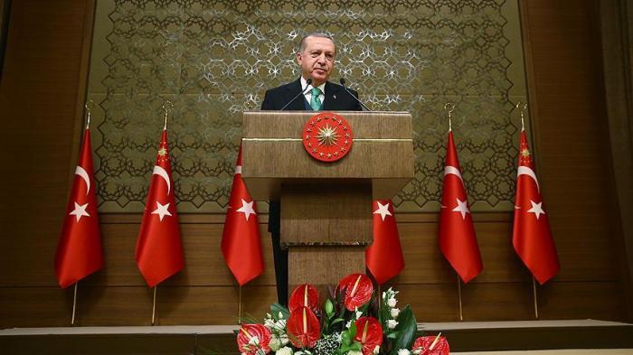 Erdogan announces Turkey