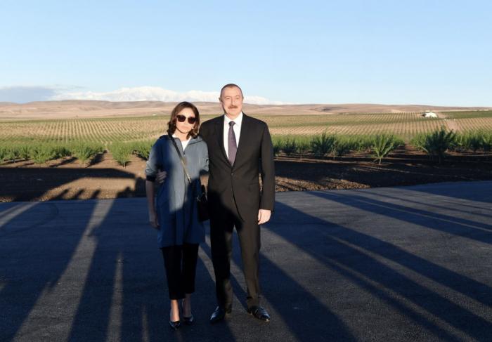 Prezident və birinci xanım Qax Aqroparkının açılışında - FOTOLAR