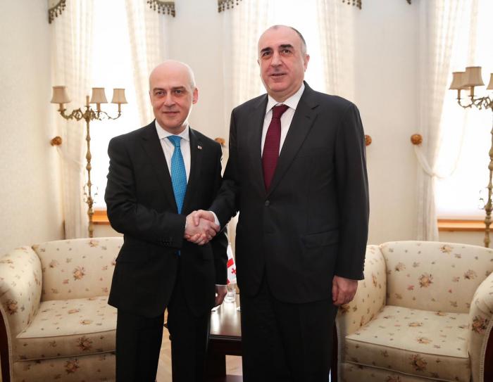 Azerbaijani, Georgian FMs discuss regional issues