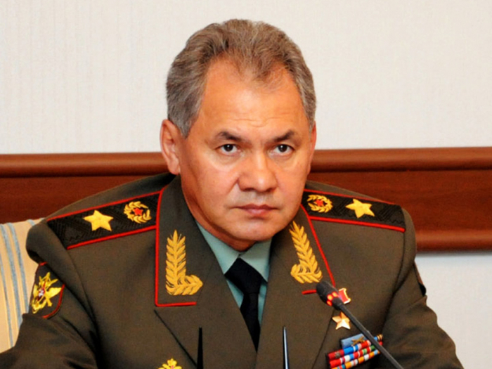 Shoigu says Russian forces delivered strikes at 122,00 terrorist facilities in Syria