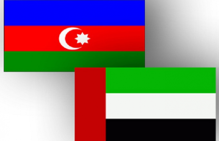 Azerbaijan, UAE discussing ways to develop economic co-op