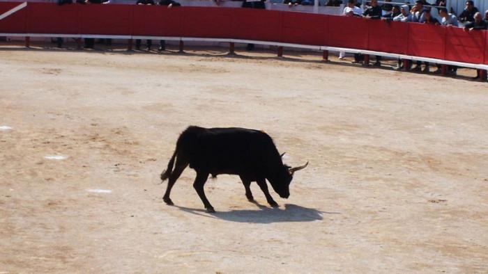 Una mujer muere en Francia por la cornada de un toro